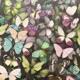 Бабочки Radio Edit Single