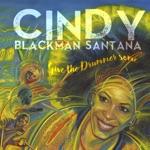 Cindy Blackman Santana - Superbad (feat. John McLaughlin)