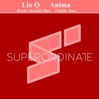 Aestimare (Bruno Andrada rmx) - LIO Q