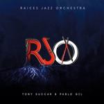 Tony Succar, Pablo Gil & Raices Jazz Orchestra - Feste - Fuego