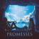 download lagu Promesses - Bigflo & Oli mp3