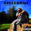 Biggie Stacks - Gbelemomi artwork
