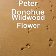 Wildwood Flower - Peter Donohue (Piano) - Peter Donohue (Piano)