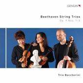 String Trio in D Major, Op. 9 No. 2: II. Andante quasi allegretto artwork