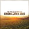 AShamaluevMusic - Atmospheric Cinematic Ambient artwork