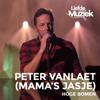 Peter Vanlaet - Hoge bomen (uit Liefde Voor Muziek) [feat. Mama's Jasje] artwork