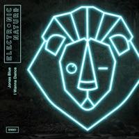 Jonas Blue - I Wanna Dance