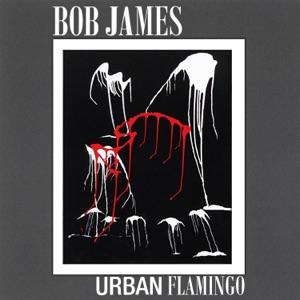 Urban Flamingo