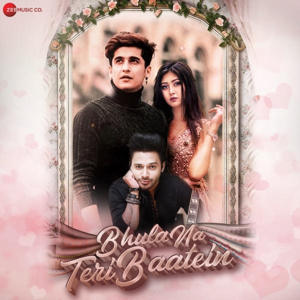 Bhula Na Teri Baatein - Single