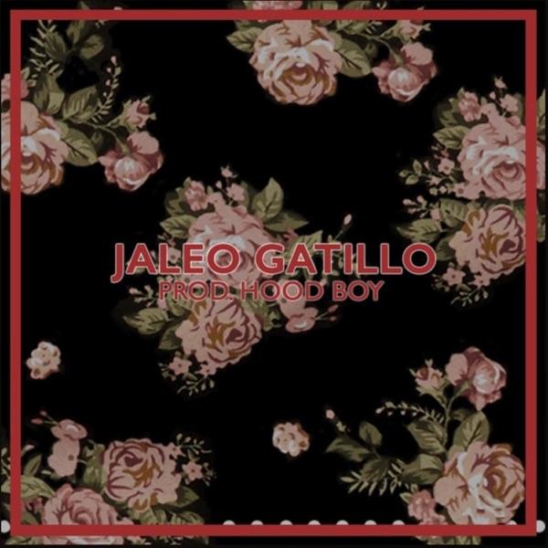 Jaleo Gatillo - Single