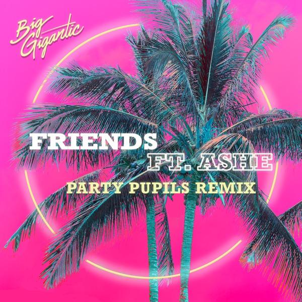 Friends (feat. Ashe) [Party Pupils Remix] - Single