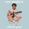 Sam Tompkins - Not So Grey artwork