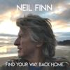 Find Your Way Back Home feat Stevie Nicks Christine McVie - Neil Finn mp3