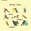 Picket Palace - Anthony McDonald-Tipungwuti artwork