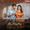 Netho Poti Paduthu From Tholu Bommalata Single