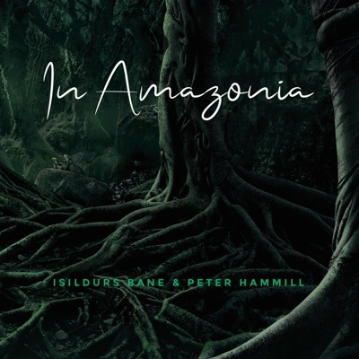 In Amazonia - Peter Hammill
