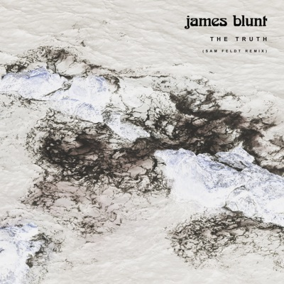 The Truth (Sam Feldt Remix) - Single - James Blunt