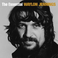 Waylon Jennings - That's the Chance I'll Have to Take artwork