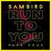 Sam Bird & Papa Zeus - Run to You artwork