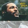 Marvin Gaye - What's Happening Brother artwork