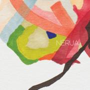 Blume - Nérija - Nérija