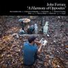 John Ferrara - A Harmony of Opposites  artwork
