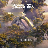 Above & Beyond and Seven Lions feat. Opposite The Other - See The End (Extended Mix)