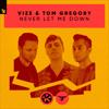 VIZE & Tom Gregory - Never Let Me Down artwork