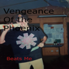 Vengeance of the Phoenix - Beats Me