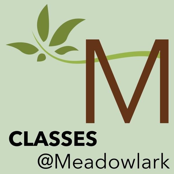 Meadowlark Church of Christ - Classes