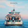 Wanda - Ciao Baby Grafik