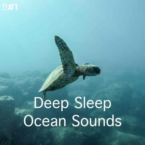 Ocean Sounds & Ocean Waves For Sleep - !!#1 Deep Sleep Ocean Sounds