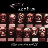 Acylum - Northern Sons Under Southern Skies