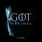 Game of Thrones (Marimba Version)