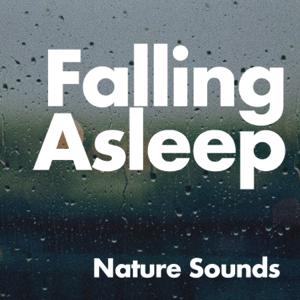 Nature Sounds - Falling Asleep