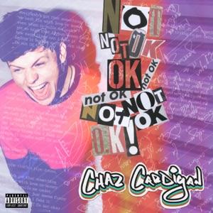 Not OK! - Single