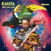 Kaleta & Super Yamba Band - Goyitò