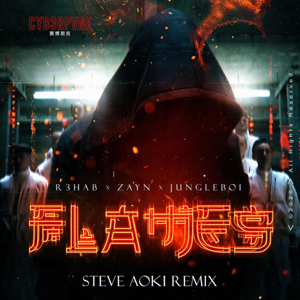 Flames [Steve Aoki Remix] - Single [feat. Jungleboi] - Single