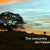 The Concertos - Jim Valesk