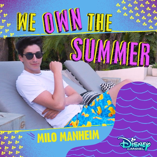 We Own the Summer - Single