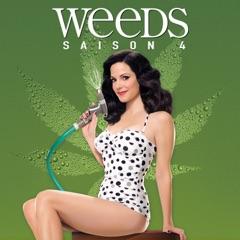 Weeds, Saison 4 (VF)