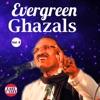 Evergreen Ghazals Vol 8