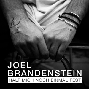 Joel Brandenstein - Halt mich noch einmal fest