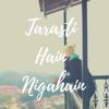 Tarasti Hain Nigahain