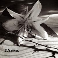 Holy Razors - Thorn artwork