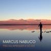 Marcus Nabuco - Preciso Aprender a Só Ser artwork