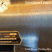 Sensitive Chaos - New Year Just Begun
