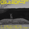 Calvin Harris, Rag'n'Bone Man - Giant Grafik