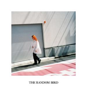 Furukawa Sarah - THE RANDOM BIRD