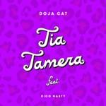 Doja Cat - Tia Tamera (feat. Rico Nasty)